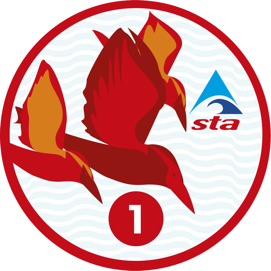 STA International Learn to Swim Programme (ILSP) - Celtic ...
