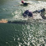 open_water_swimmers